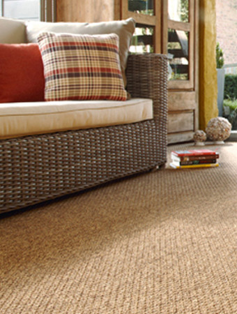 Area Rugs Sisal